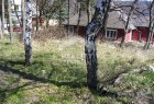 Recreation plot for sell in Michalovce