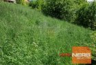 Plot for housing project for sell in Vranov nad Topľou