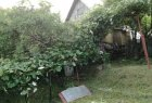 Garden cottage for sell in Zvolen