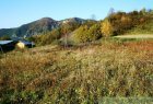 Meadow, grassland for sell in Haligovce
