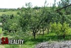 Orchard for sell in Levice
